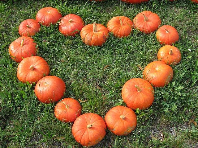 pumpkin-1083103_640